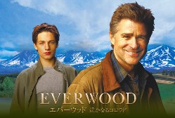everwood_top.jpg