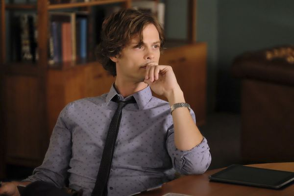 Report_Criminalmind_Gubler.jpg