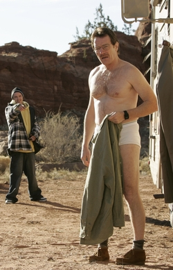 BreakingBad_yr1_#1(1-1)_us250_0402.jpg