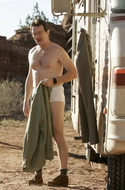BreakingBad_yr1_us250_0711.jpg